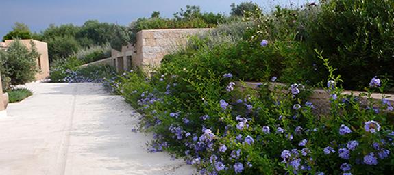 02_giardini